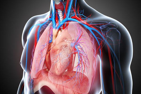 Cirugía cardíaca